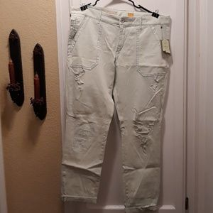 nwt pilcro and the letterpress mint chino pant 32
